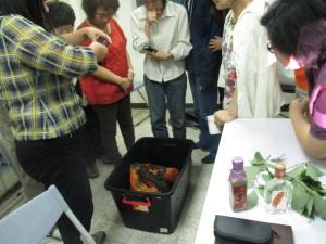學員們一睹牛樟之神祕的面紗